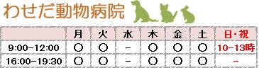 わせだ動物病院 / 新宿区早稲田の動物病院